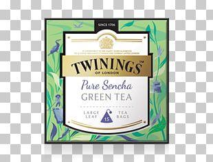 Sencha English Breakfast Tea Green Tea Earl Grey Tea PNG