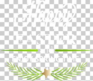 Leaf Text Graphics Green Illustration PNG