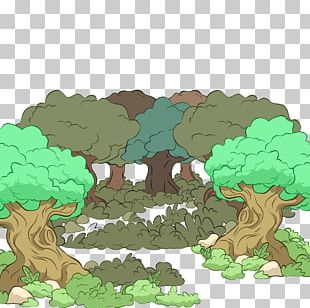 Forest Euclidean Illustration PNG