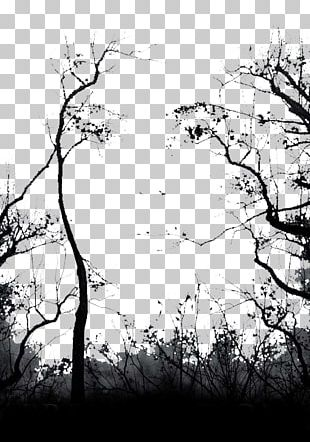 Tree Euclidean Computer File PNG
