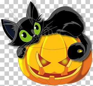 Pumpkin And Cat Halloween PNG
