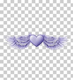 Data Angel Wing PNG