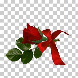 Garden Roses Floral Design Cut Flowers PNG