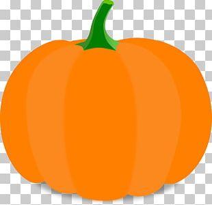 Pumpkin Cartoon Halloween PNG