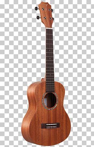 Ukulele Musical Instrument Guitar Fingerboard String Instrument PNG