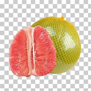 Grapefruit Pomelo Tangelo Citron PNG