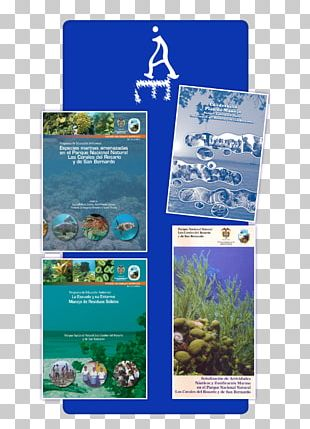 Coral Reef Ecosystem Water Resources Advertising PNG