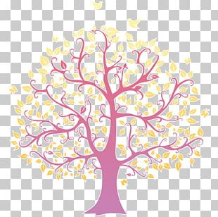 Family Tree Drawing Genealogy Ancestor PNG