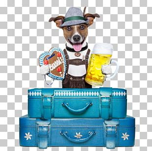 Beer Glasses Oktoberfest BrewDog PNG
