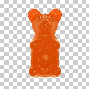 Gummy Bear Gummi Candy Lollipop PNG