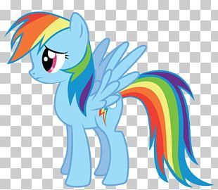 Rainbow Dash Fluttershy My Little Pony PNG