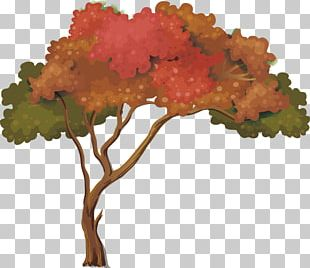 Nature Tree PNG