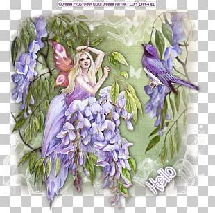 Floral Design Fairy Flowering Plant PNG
