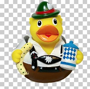 Saxony Duck Rubber Duck Mallard Germany PNG