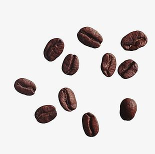 Scattered Coffee Beans PNG