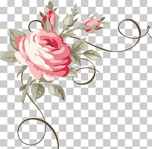 Flower Ornament Floral Design Rose PNG