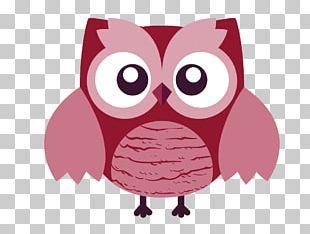 Owl T-shirt Cartoon PNG