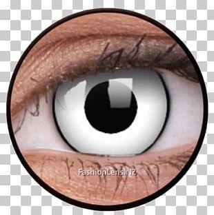Contact Lenses Circle Contact Lens Glasses Eye PNG