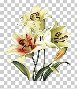 Flower Floral Design Watercolor Painting Art PNG
