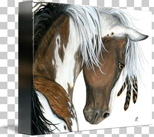 American Paint Horse Mustang Pony Mane American Quarter Horse PNG