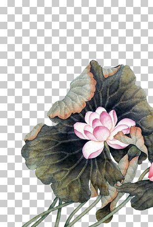 China Chinese Painting Chinese Art Flower PNG
