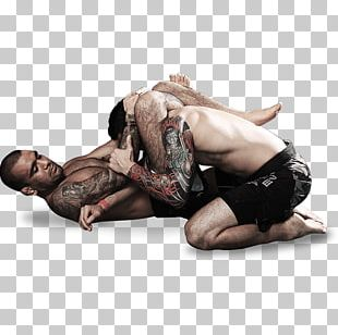 Grappling Submission Wrestling Mixed Martial Arts PNG