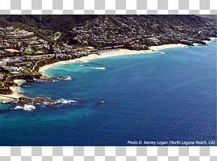 Newport Beach South Laguna Long Beach Shaws Cove PNG