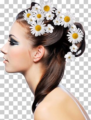 Hairstyle Beauty Parlour Fashion Hair Care PNG
