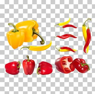Bell Pepper Vegetable Chili Pepper PNG