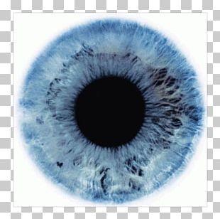 Human Eye Darkness Light Black Eye PNG