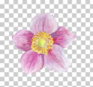 Flower Watercolor Painting Ink PNG