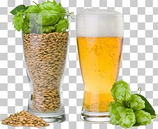 Beer Brewing Grains & Malts Beer Brewing Grains & Malts Common Hop Brewery PNG