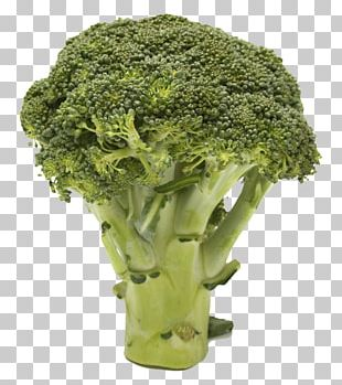 Broccoli Resolution PNG