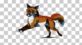 Dog Breed Red Fox Snout Animal PNG