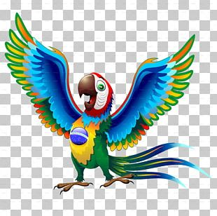 Brazil Parrot Scarlet Macaw Bird PNG