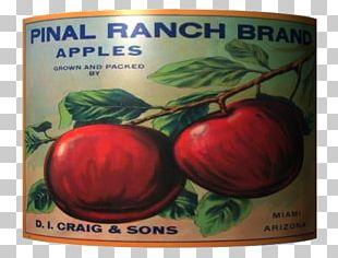 Bush Tomato Natural Foods Apple PNG