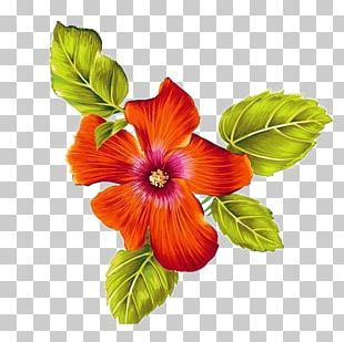 Art Watercolor Painting Floral Design Flower PNG