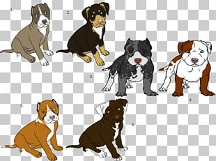 Puppy Dog Breed Cat Pit Bull Bull Terrier PNG
