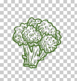 Broccoli Cauliflower Vegetable Computer File PNG