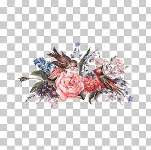 Bird Flower Illustration PNG