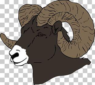 Sheep Cattle Goat Horse Horn PNG