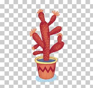 Cactaceae Drawing Succulent Plant Watercolor Painting Illustration PNG