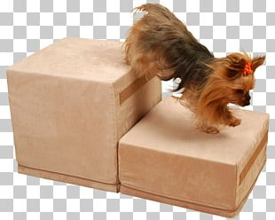 Dog Breed Cat Pet Dog Crate PNG