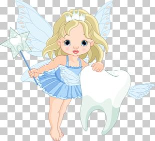 Tooth Fairy Illustration PNG