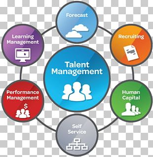 Talent Management System Human Resource Organization PNG
