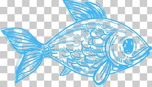 Drawing Deep Sea Creature Pencil Sketch PNG