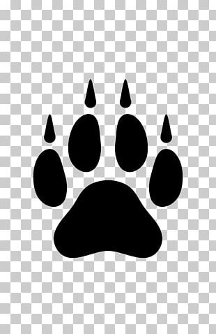 Dog Arctic Wolf Paw PNG