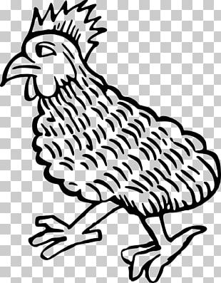 Rooster Plymouth Rock Chicken Bird Chicken As Food Poultry PNG