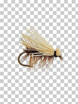 Artificial Fly Elk Hair Caddis Fly Fishing PNG