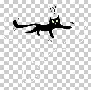 Whiskers Cat Keyword Tool PNG